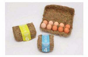 خرید و فروش لیزر دایود و الکساندرایت چه مواد غذایی را میتوان جایگزین تخم مرغ کرد