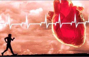 خرید و فروش لیزر دایود و الکساندرایت ورزش مناسب برای کاهش فشار خون چیست